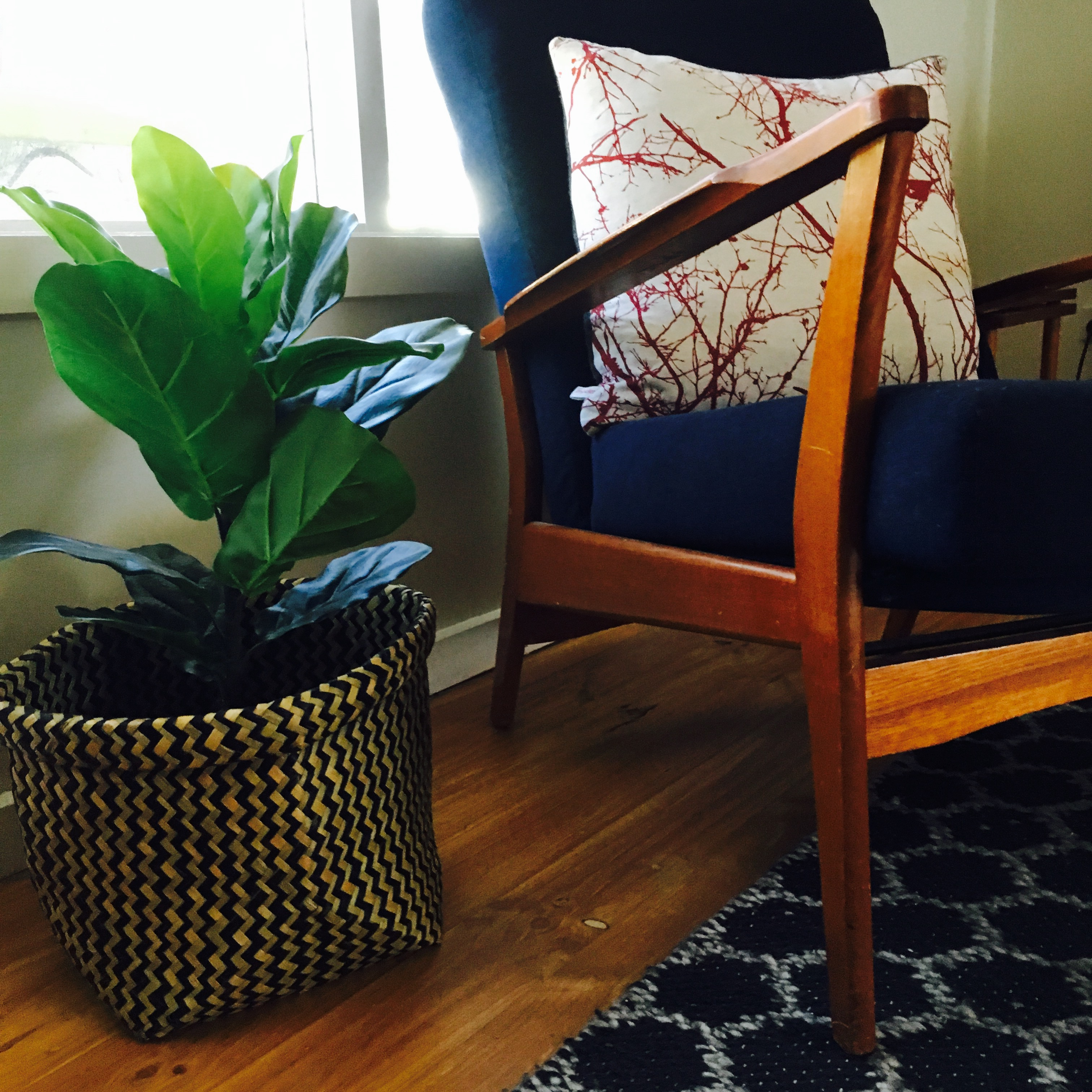 chair-and-plant